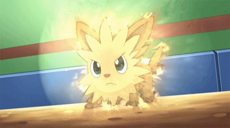 Dog Pokémon: